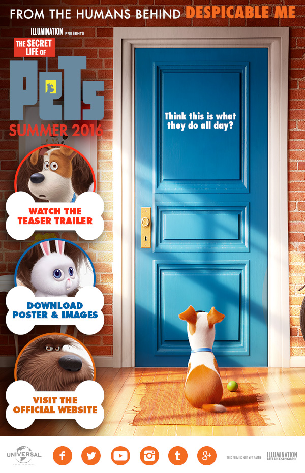 The Secret Life of Pets HD İzle